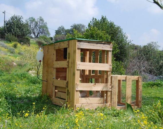 עוף Grid – קומפוסטר תרנגולות